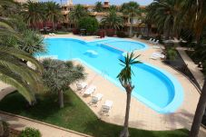 Apartamento con piscina en Corralejo